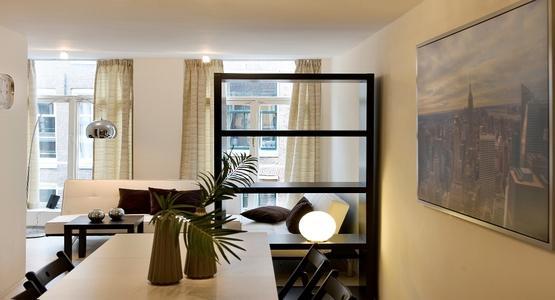 Living Room Manhattan Apartment Amsterdam - Manhattan - Amsterdam - rentals