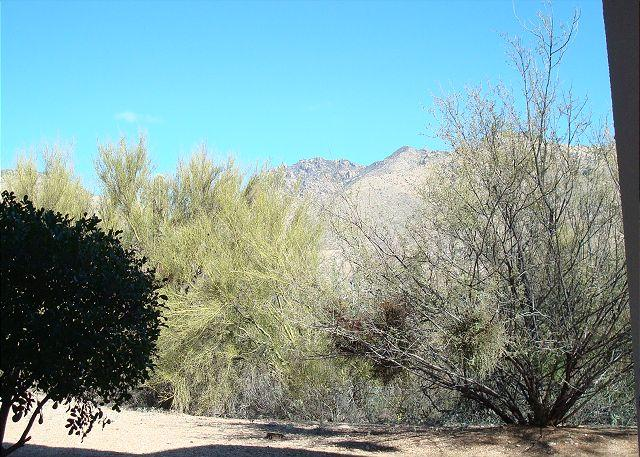 First Floor with Great Mountain Views -Easy Access and Private - Image 1 - Tucson - rentals
