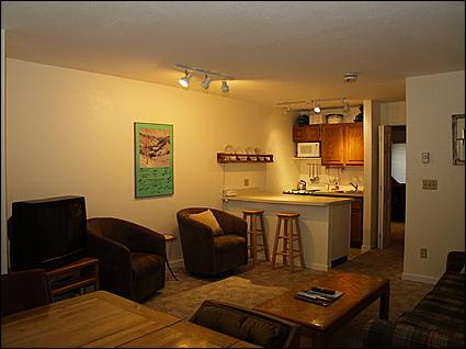 Living Room - Kitchen - Conveniently Located Condo - Walk To Dining, Nightlife and Shopping (1370) - Telluride - rentals