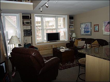 Living Area - Flat Screen TV - Modern Condo - Walk to Shopping & Restaurants (5429) - Telluride - rentals