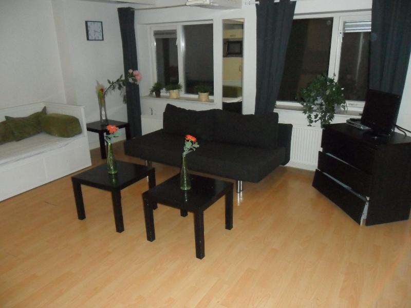 Living Room Christopher Robin Apartment Amsterdam - Christopher Robin - Amsterdam - rentals