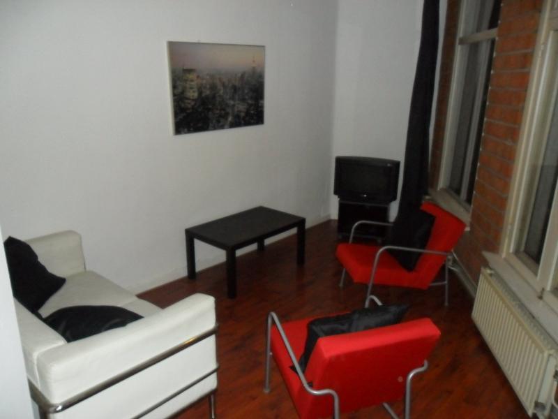 Living Room Piglet Apartment Amsterdam - Piglet - Amsterdam - rentals