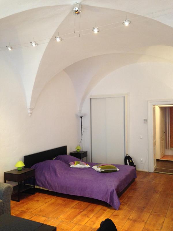 ARCADE STUDIO CLOSE TO THE GRAND SQUARE - Image 1 - Sibiu - rentals