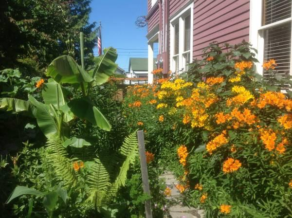 Our duplix bungalow is behind. Flowers comes June-July Only. - 1 Bdrm Bungalow Fully Furnished - Anacortes - rentals