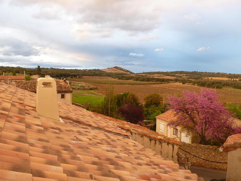 "Gorgeous views and hues - La Belle Ancienne (""Ancient Beauty"") - Saint-Chinian - rentals"