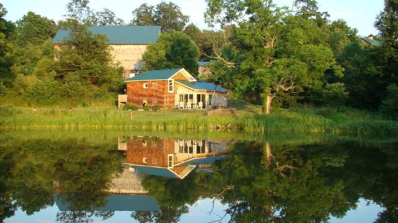 Privately nestled between barn, pond and wooded area - with meadow and forest views - Private, peaceful, ecofriendly, modern cottage - Fort Hill - rentals