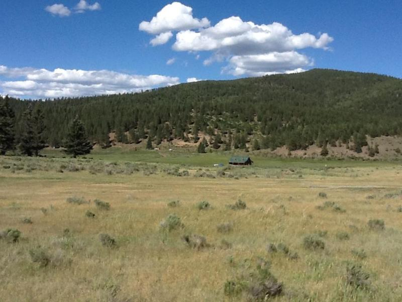 Carson National Forest and the House - Taos gorgeous 3 bed house on 40 acres - 12 fenced - Taos - rentals