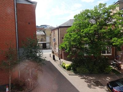 View from kitchen window - Self-contained flat in the centre of Winchester - Winchester - rentals