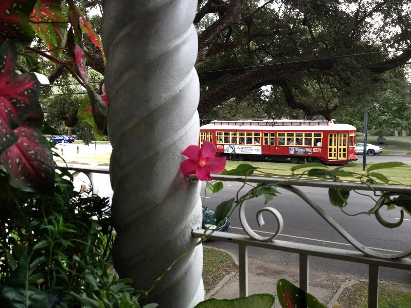 Balcony View - Tropical balcony on Canal Streetcar Line near FQ - New Orleans - rentals
