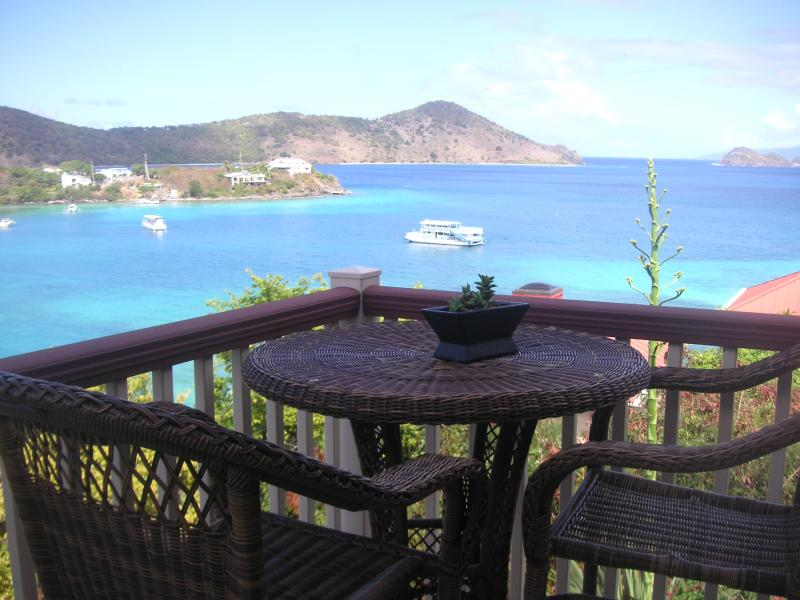 Beautiful Ocean view with morning coffee - Chateau Relaxo perfect vacation spot with amazing ocean views, wrap around veranda,privacy and superbly renovated. - Charlotte Amalie - rentals