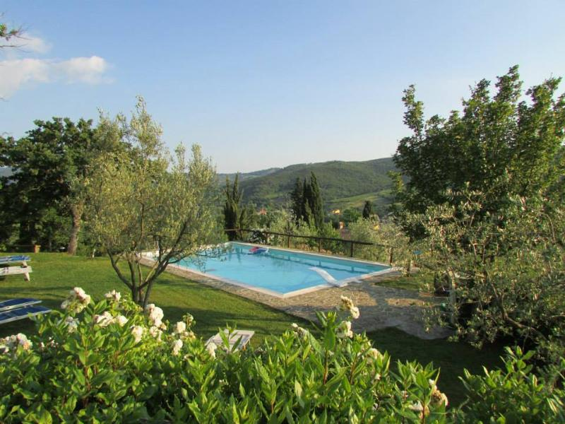 "Pool area - Podere Campriano family winery ""Pilu Apartment"" - Greve in Chianti - rentals"