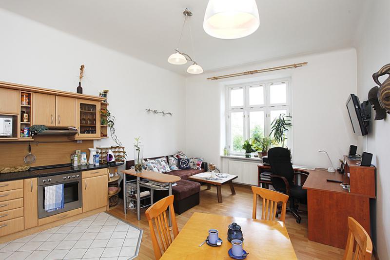Living room with kitchen corner - Quiet apartment in diplomatic area - Prague - rentals