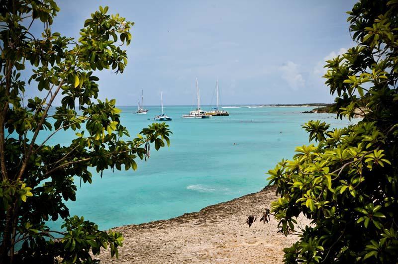 Benji's Apartment - ID:131 - Image 1 - Aruba - rentals