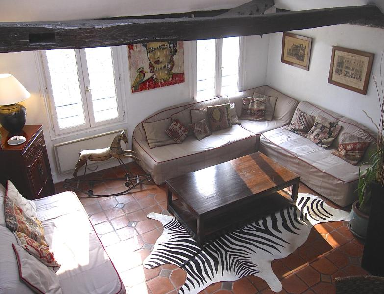 Charming apartment, on quay de Seine, in le Marais - Image 1 - Paris - rentals