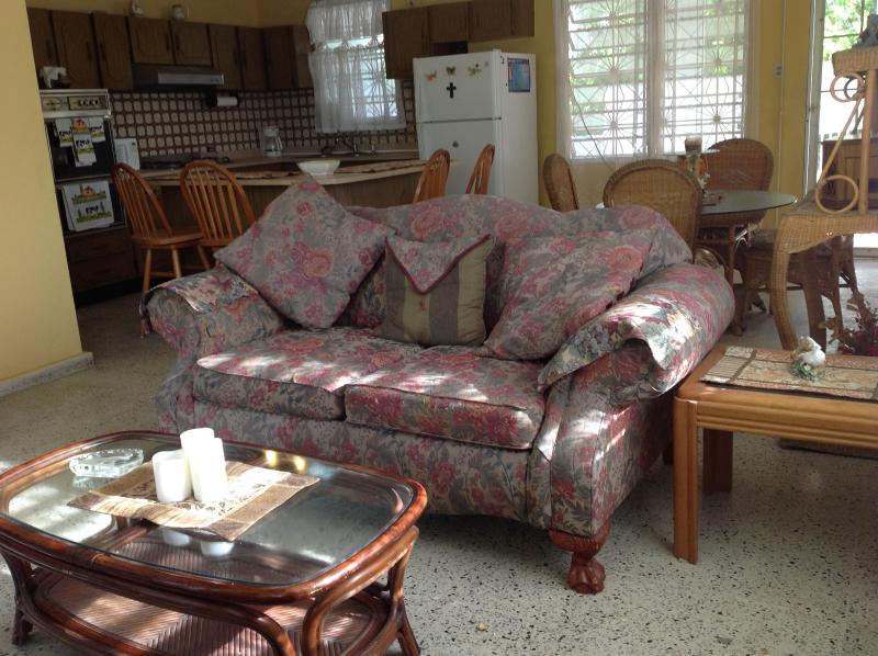 Living Room - Vacation Rental Punta Santiago, Puerto Rico - Punta Santiago - rentals