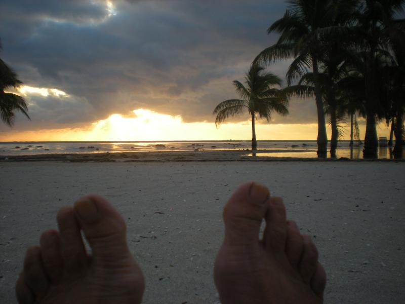 "Sunset a brilliant time of day! - Paver Park ""Lighthouse""  Retreat into Paradise - Sarasota - rentals"