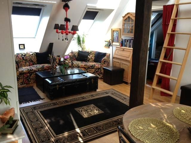 Living room - Theatrical Attic Apartment with great views - Oslo - rentals
