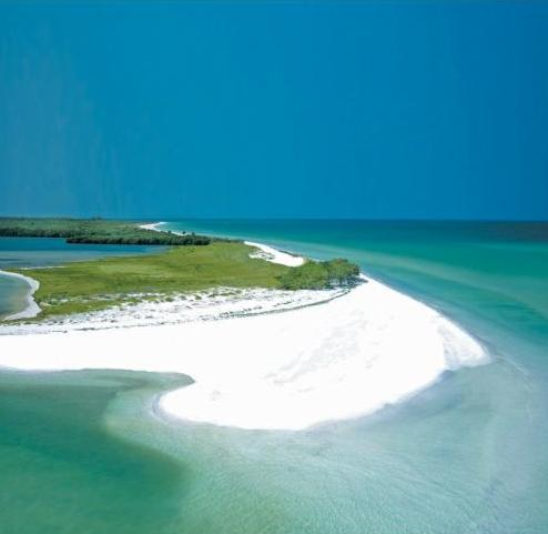 Caladesi Island 3mi. - Beach Vacation Rental Home/House DUNEDIN , FLORIDA - Dunedin - rentals