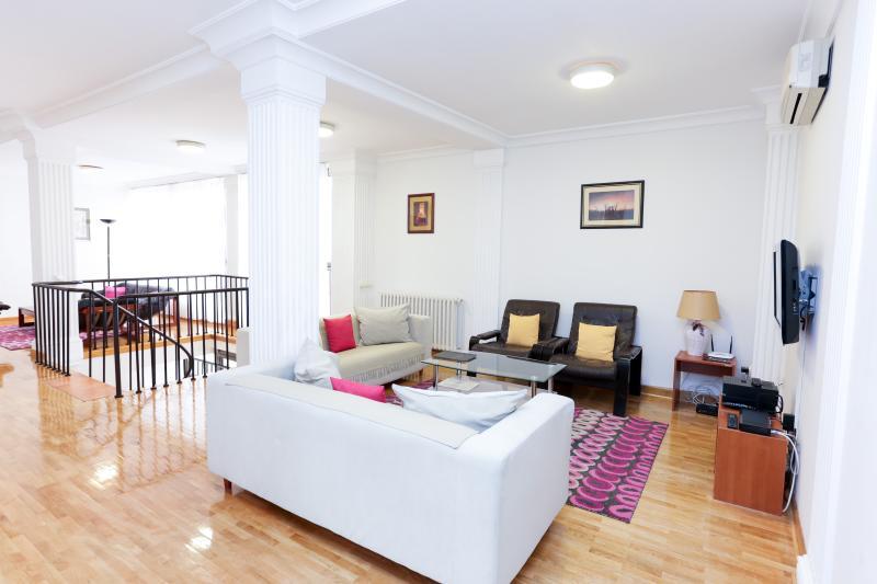 Living room - Penthouse Vracar-154m2- 4 bedrooms - Belgrade - rentals
