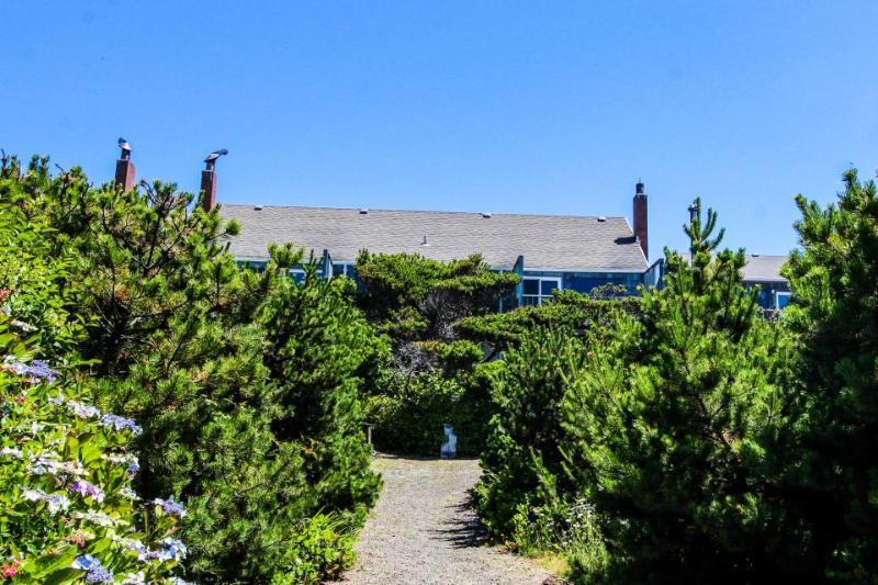 Quiet oceanfront getaway w/ocean views, walk to beach - dogs ok! - Image 1 - Waldport - rentals