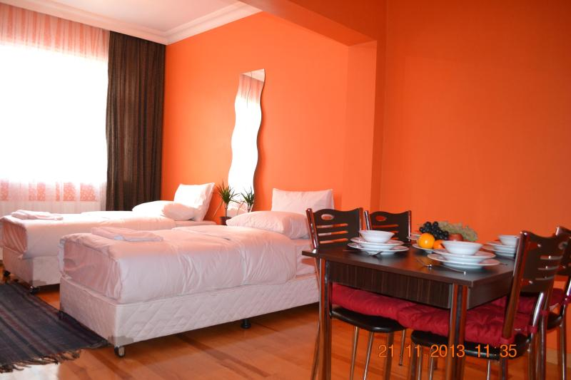 Twinbedroom - In The Heart Of Old City - Istanbul - rentals