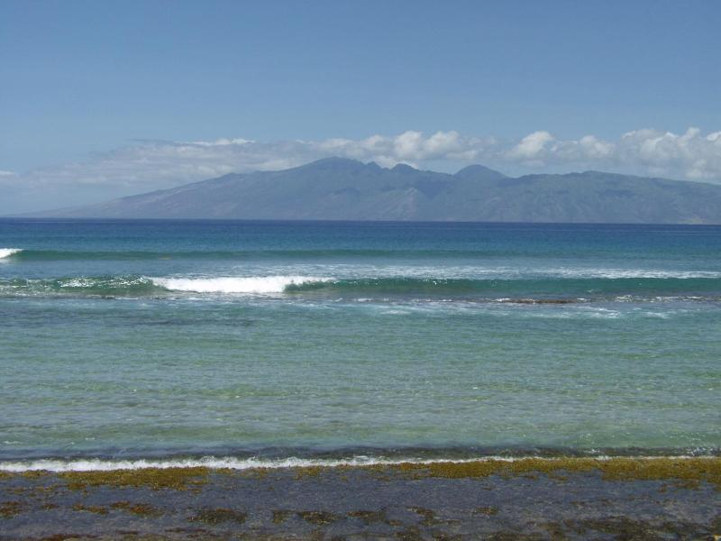 Great Ocean view of Molokai from the complex! - Absolute Best Condo in the Complex! - Lahaina - rentals