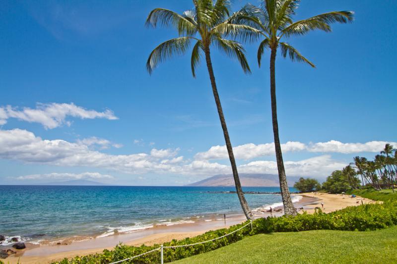Ulua Beach at front of property - Wailea Elua 2BR Oceanview Condo, Beachfront Resort - Wailea - rentals