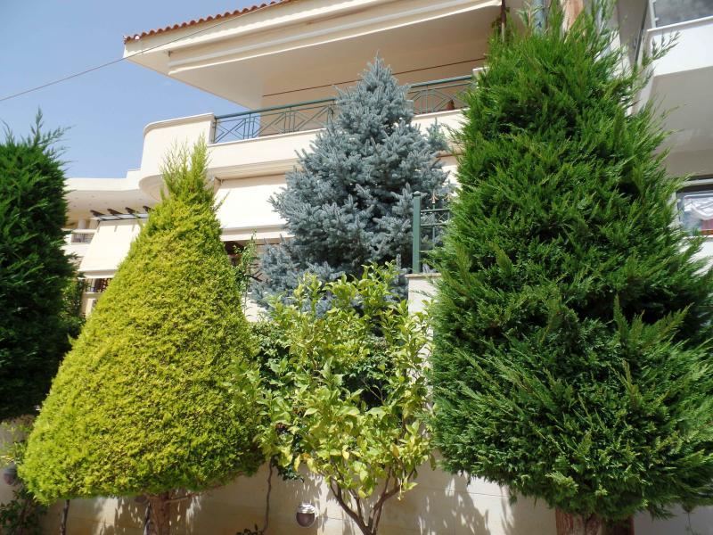 exterior view - VILLA HERMES SARONIDA - Saronida - rentals
