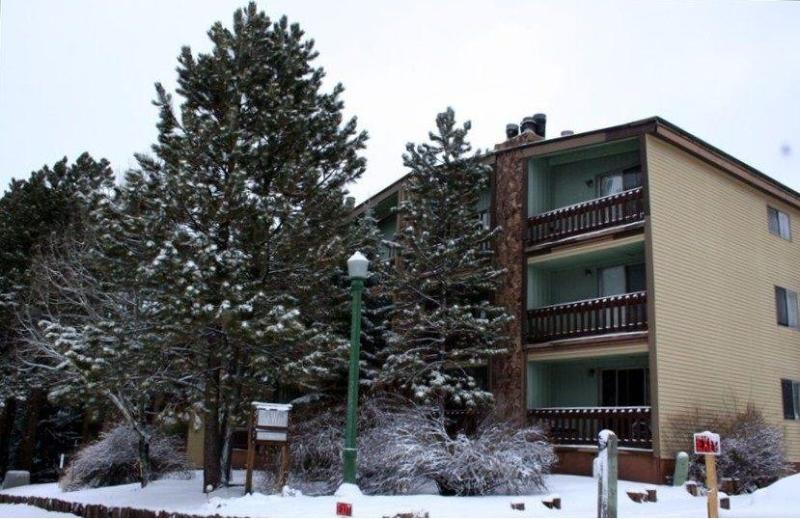 The Wren Building - Just 1.5 Blocks from the Slopes! - Spacious!  2 Bed 2 Bath Ski & Bike Condo in Angel - Angel Fire - rentals