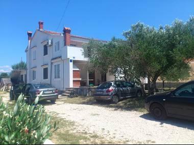 house - 35657  A2 Ratko(2+1) - Vrsi - Vrsi - rentals