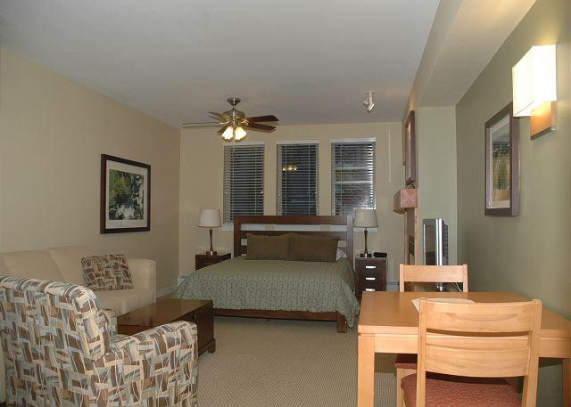 Overview of this beautiful studio condo - Cozy and Comfortable Studio which can be combined with 1 bedroom condo # 3324 - Winter Park - rentals