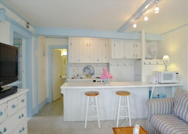 Chatham first floor condo facing Lighthouse Beach! - Image 1 - Chatham - rentals