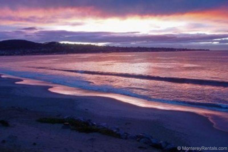Ocean Harbor 204 - Image 1 - Monterey - rentals