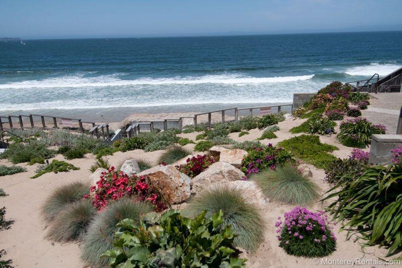 Ocean Harbor 333 - Image 1 - Monterey - rentals
