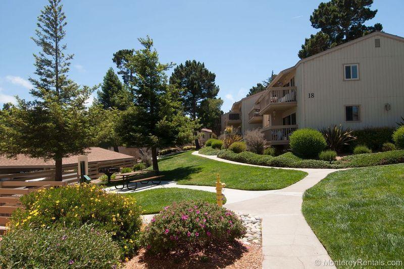 Footprints 303 - Image 1 - Monterey - rentals