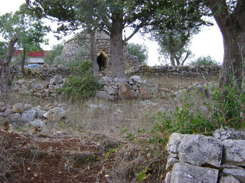 PUGLIA: Country house: 30 minutes from tourist des - Image 1 - Acquaviva delle Fonti - rentals