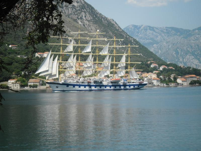 Apartment Tweety - Image 1 - Kotor - rentals