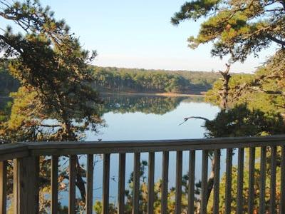 Gorgeous Views from Deck - Pond Front with gorgeous views! - Chatham - rentals