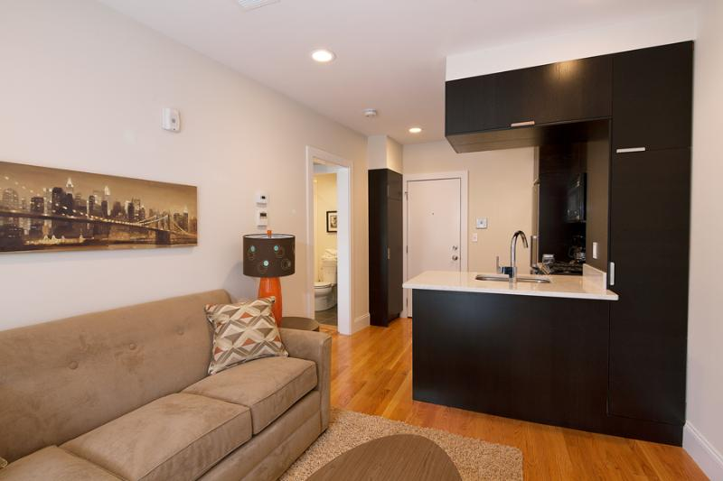 South End Boston Furnished Apartment Rental - 784 Tremont Street Unit 6 - Image 1 - Boston - rentals