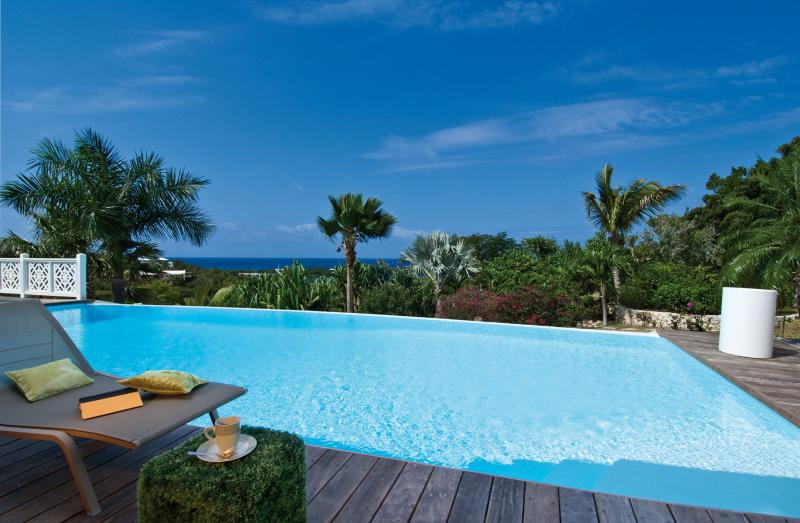 Callisto - Ideal for Couples and Families, Beautiful Pool and Beach - Image 1 - Terres Basses - rentals