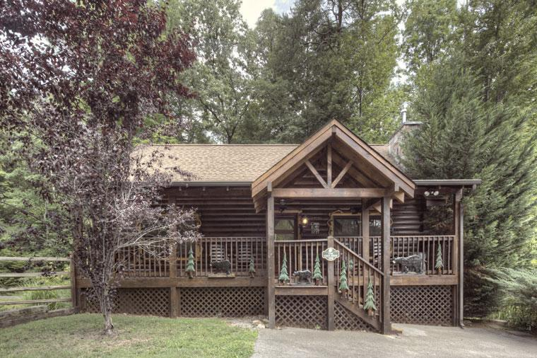 ER308 - THE COZY BEAR - Image 1 - Pigeon Forge - rentals