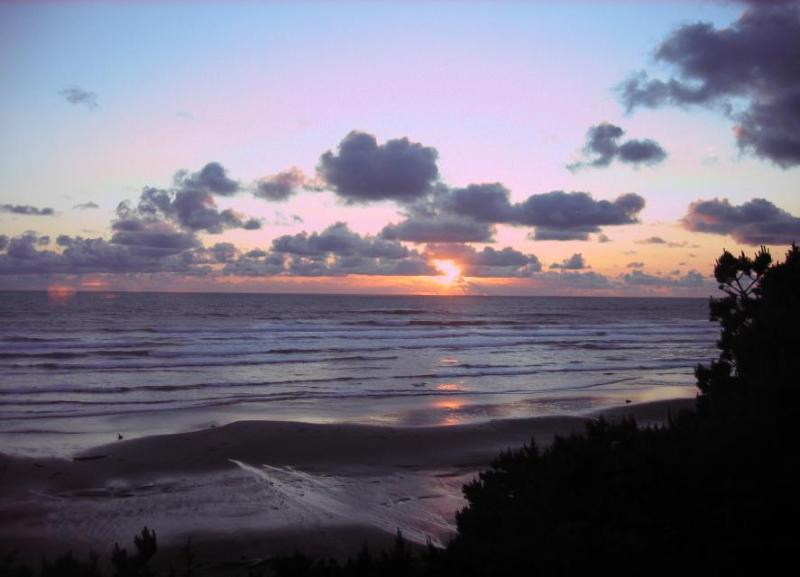 A relaxing and beautiful oceanfront retreat - Image 1 - Seal Rock - rentals