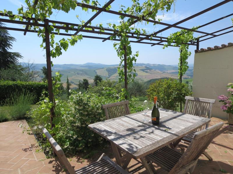 Pergola with grape arbor - Beautiful Tuscan Independent Cottage With Views - San Casciano dei Bagni - rentals