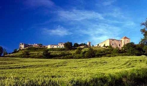 Petit Castelnau De Fezensac - Image 1 - Castera-Lectourois - rentals