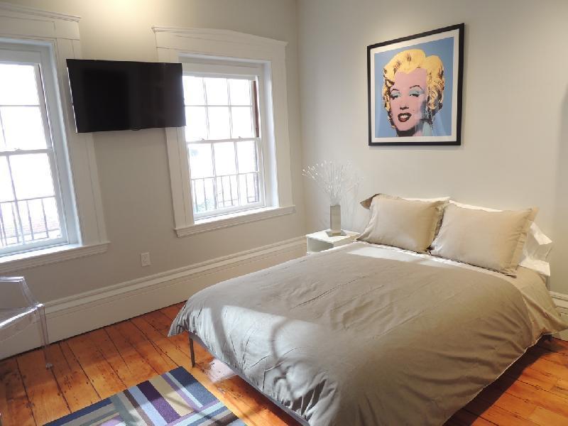 Upscale Designer Studio next to MGH - Image 1 - Boston - rentals