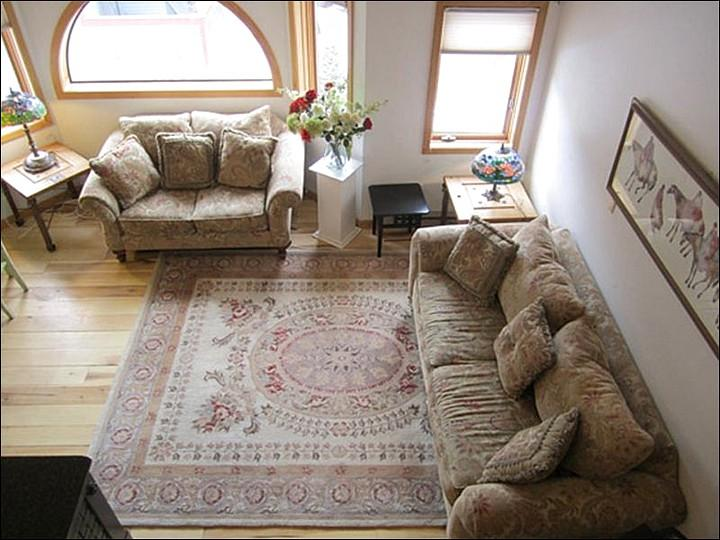 Spacious and Sunny Living Room - Completely Upgraded Interior - Well-Behaved Pets Welcome (6701) - Telluride - rentals
