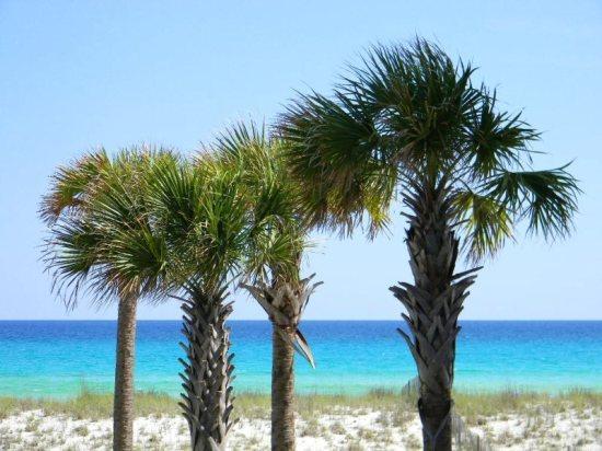 Summerwind 104W Balcony View - Summerwind Resort on Navarre Beach 104W - Navarre - rentals