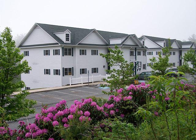 New Village at the Green Park 204 condo near the historic Green Park Inn - Image 1 - Blowing Rock - rentals