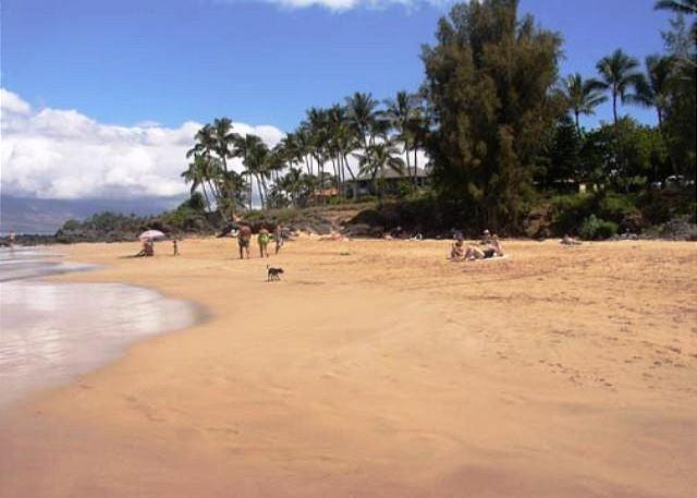 Charley Young Beach across the street from Maui Vista - 2B/2Ba Ocean View Unit, Perfectly Situated 100 Yards from Kamaole Beach I - Kihei - rentals