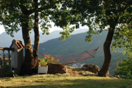 "Villa ""Hrabri Vuk 1"", Budva, Montenegro - Image 1 - Budva - rentals"
